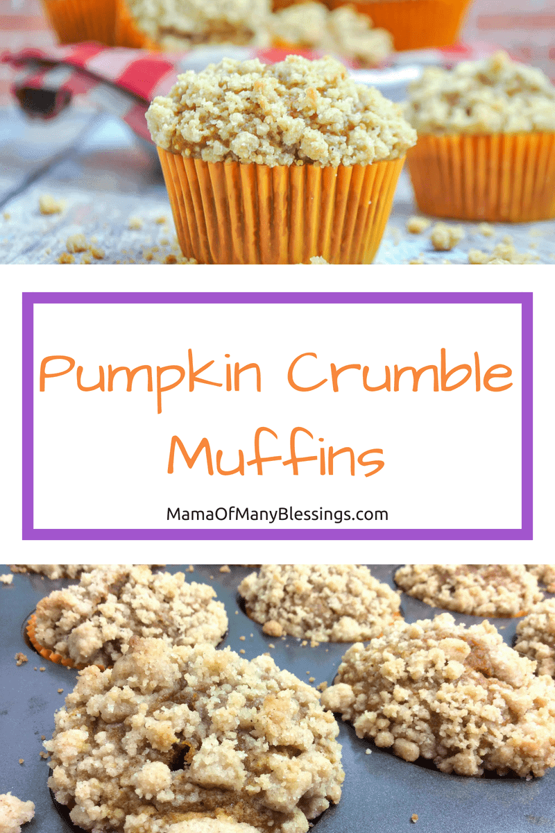 Pumpkin crumble muffins are the perfect thing to add to your meal or snacks. What's even better is they are easy to make and delicious! 