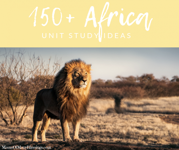 Africa Unit Study Ideas