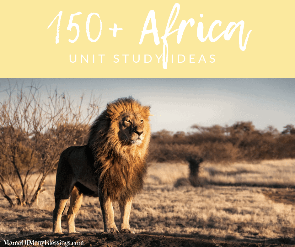 150+Africa Unit Study Ideas Facebook