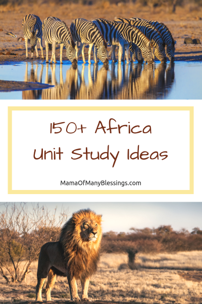 150+Africa Unit Study Ideas Pinterest