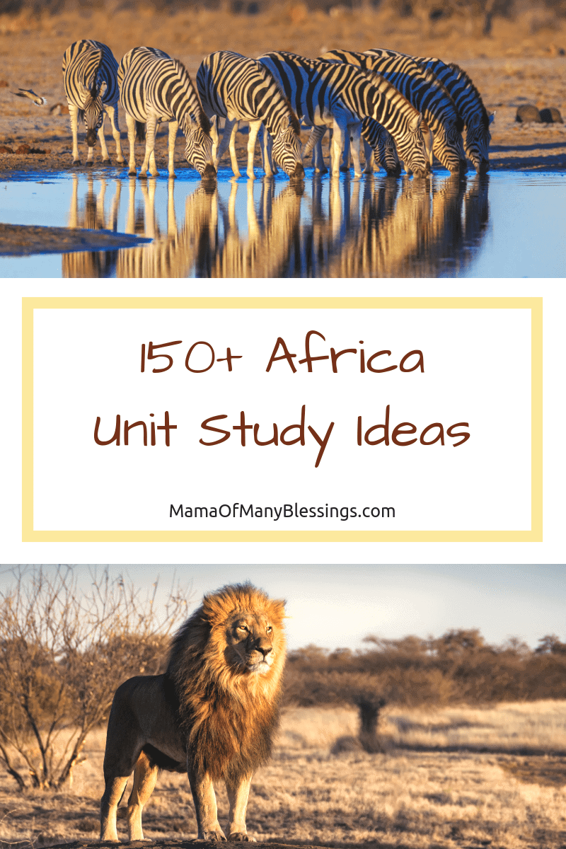 Making learning fun is a top priority for me teaching my kids. This list is where I start when doing our Africa unity study. There are tons of great ideas.