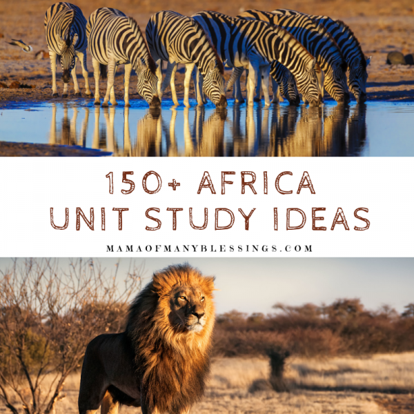 150+Africa Unit Study Ideas Square