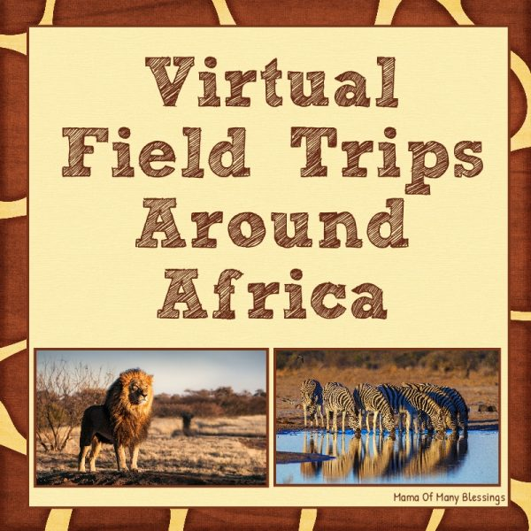 Africa Virtual Field Trips For Kids