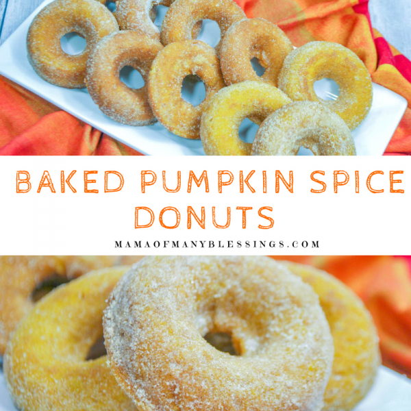 Baked Pumpkin Spice Donuts Square 2