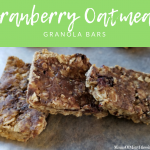 Cranberry Oatmeal Granola Bars