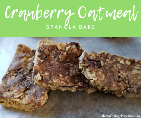 Cranberry Oatmeal Granola Bars