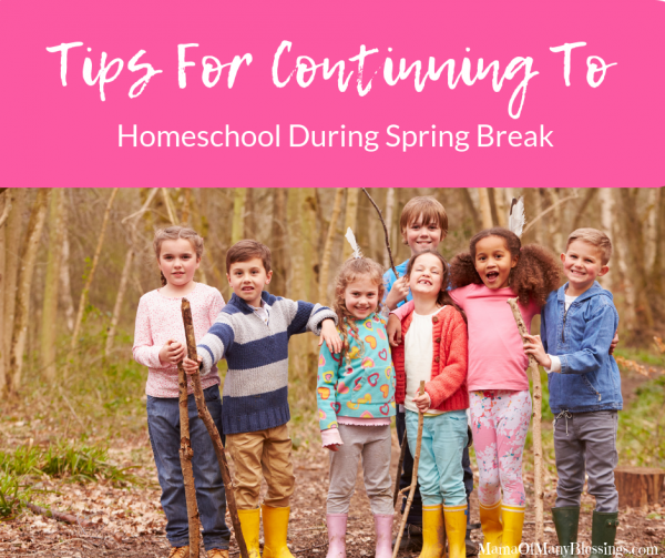 Tips For Continuing To Homeschool During Spring Break