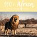 150+Africa Unit Study Ideas Facebook
